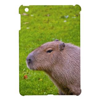 Amazing Animal Capybara iPad Mini Cases