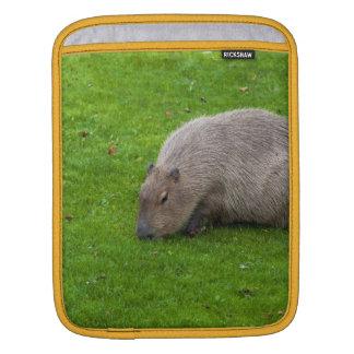 Amazing Animal Capybara iPad Sleeve