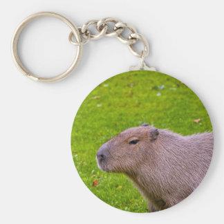 Amazing Animal Capybara Keychain