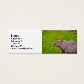Amazing Animal Capybara Mini Business Card