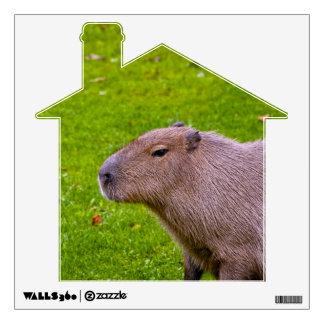 Amazing Animal Capybara Wall Decal