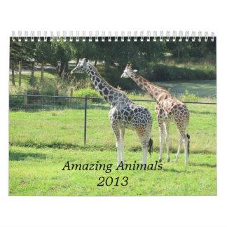 Amazing Animals 2013 Calendar