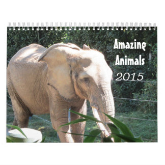Amazing Animals 2015 Calendar