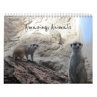 Amazing Animals Calendar