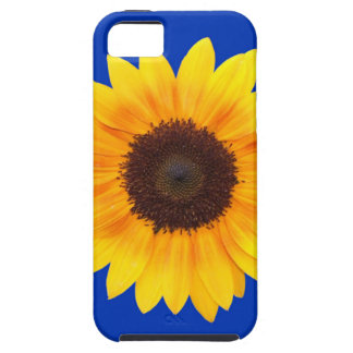 Amazing Autumn Beauty Sunflower iPhone 5 Cases
