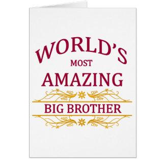 Amazing Big Brother