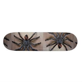 Amazing black tarantula spider skateboard deck