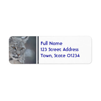 Amazing Bobcat Label