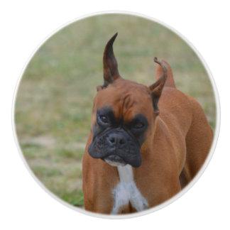 Amazing Boxer Dog Ceramic Knob