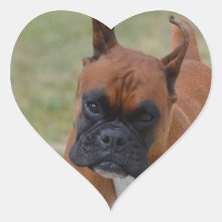 Amazing Boxer Dog Heart Sticker