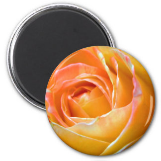 amazing colors 2 inch round magnet