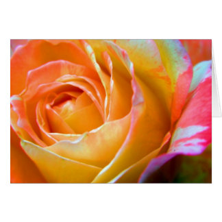 amazing colors greeting card