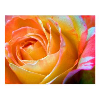 amazing colors postcard