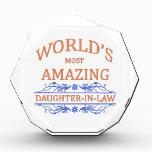 Amazing Daughter-In-Law Acrylic Award