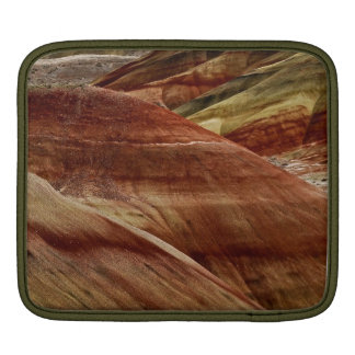 AMAZING DETAIL OF PAINTED HILLS OF OREGON iPad SLEEVE