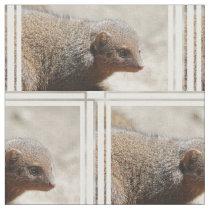 Amazing Dwarf Mongoose Fabric