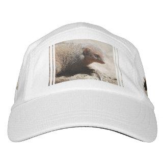 Amazing Dwarf Mongoose Headsweats Hat