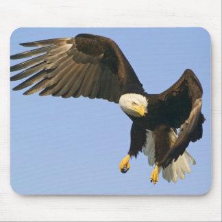 Amazing Eagle Mouse Pad