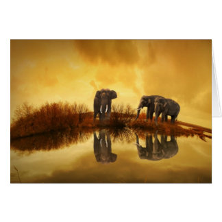 Amazing Elephant Sunset Card