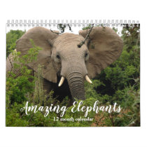 Amazing Elephants 2021 Calendar