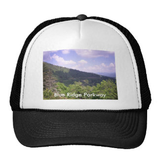 Amazing Far Look At Blue Ridge Mesh Hats