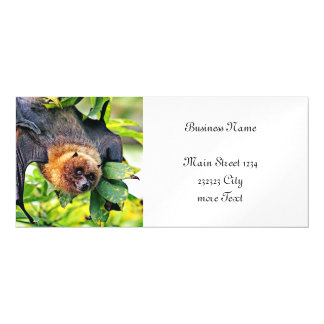 amazing Flight dog - bat Magnetic Card