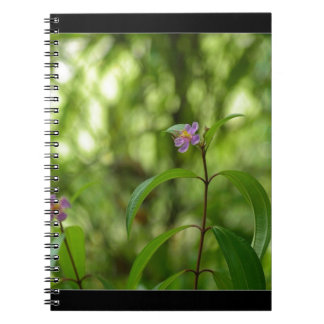 Amazing flower in the world note books