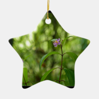 Amazing flower in the world Double-Sided star ceramic christmas ornament
