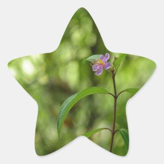 Amazing flower in the world star sticker