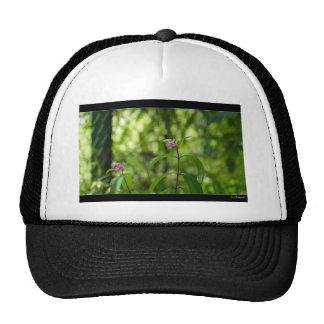 Amazing flower in the world trucker hat