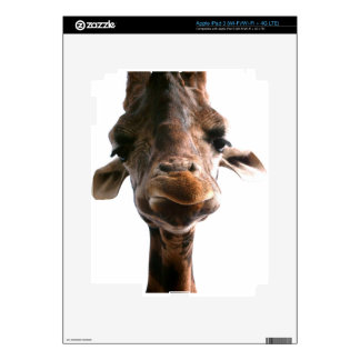 Amazing giraffe head what could be more fun decals for iPad 3