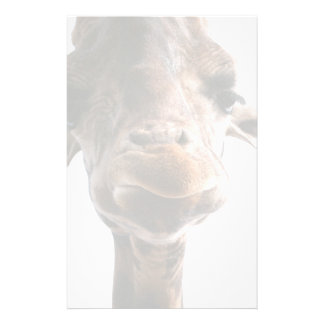 Amazing giraffe head what could be more fun stationery