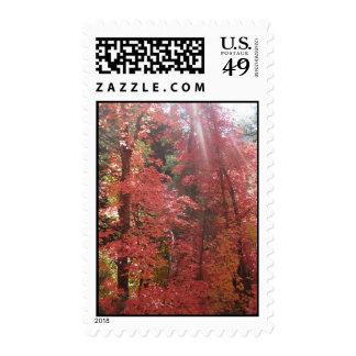 Amazing Grace (6) Postage Stamp