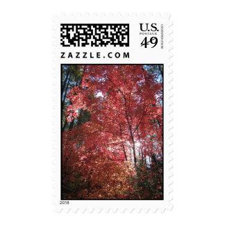 Amazing Grace (7) Postage Stamp