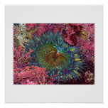 Amazing Green Anemone Posters