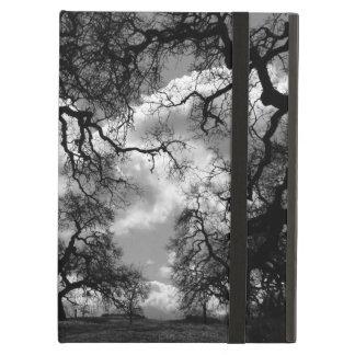 Amazing Haunting Tree Photo Case For iPad Air