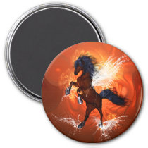 Amazing horse with fire and water magnet