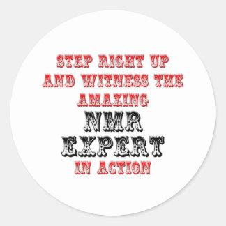 Amazing NMR Expert In Action Classic Round Sticker