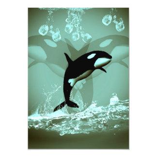 Amazing Orca Cards