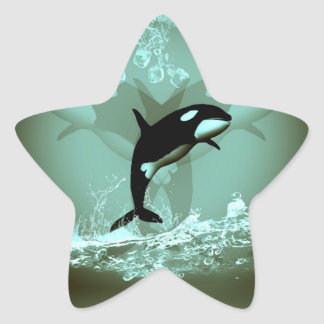 Amazing Orca Star Stickers