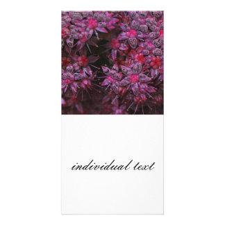 amazing pink flowers (I) Photo Card