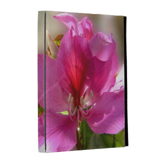 Amazing pink tropical tree flower iPad case