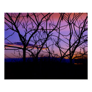 Amazing Purple Sunset with Tree Silhouettes Poster