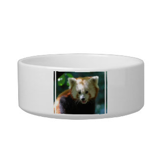 Amazing Red Panda Cat Water Bowl