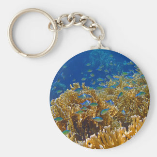 amazing red sea basic round button keychain