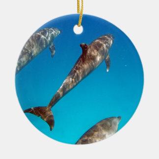 amazing red sea ceramic ornament