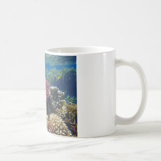 amazing red sea coffee mug