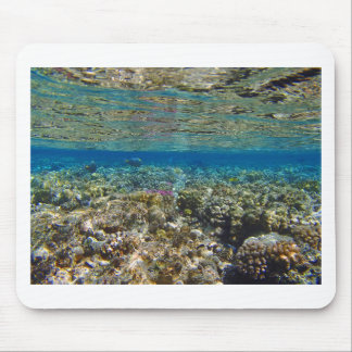 amazing red sea mouse pad