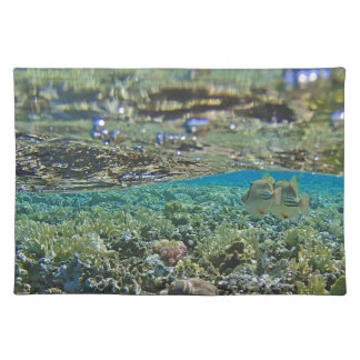 amazing red sea cloth place mat