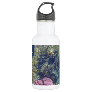 amazing red sea stainless steel water bottle